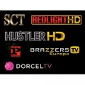 Adult Spectacular Bundle 19 Channel Hotbird Astra