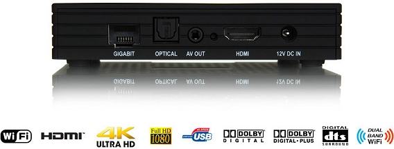 Zaap TV HD609N (Connectivity)
